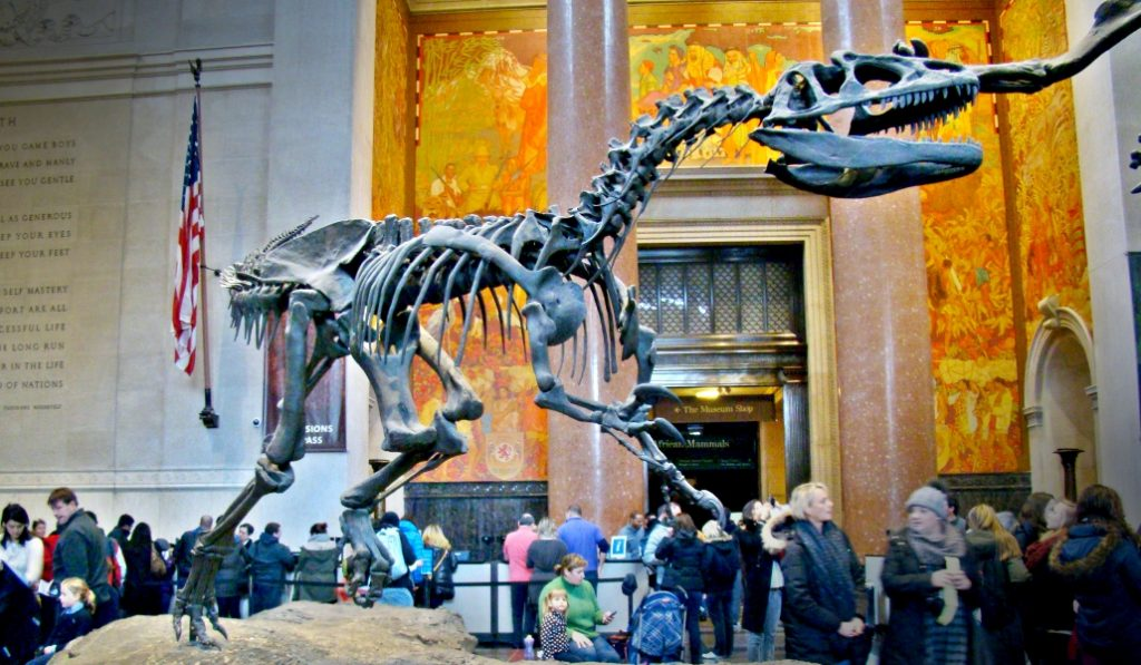 An Incredible New T. Rex Exhibtion Is Coming To New York's Museum Of Natural History