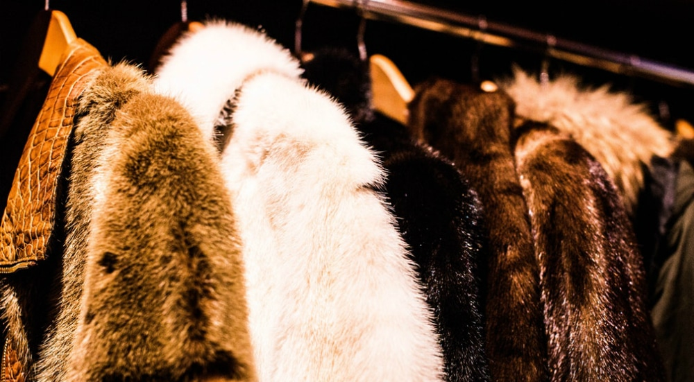 The Sale And Trade Of Fur May Soon Be Banned Across New York State
