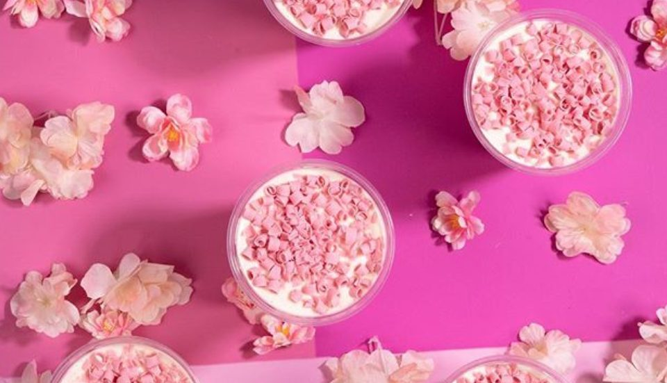 Limited Edition Cherry Blossom Shake is Finally at Shake Shack NYC