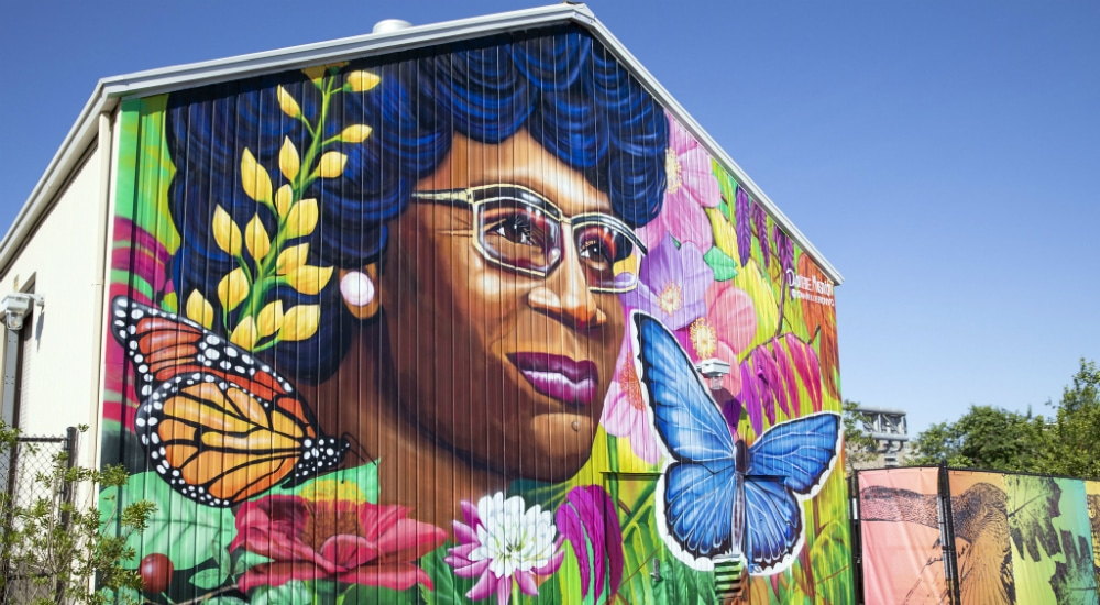 407-Acre Shirley Chisholm State Park Is Finally Open In Brooklyn