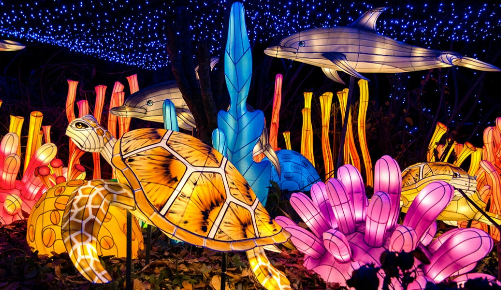 The Bronx Zoo's Dazzling Holiday Lights Are Returning Soon To NYC
