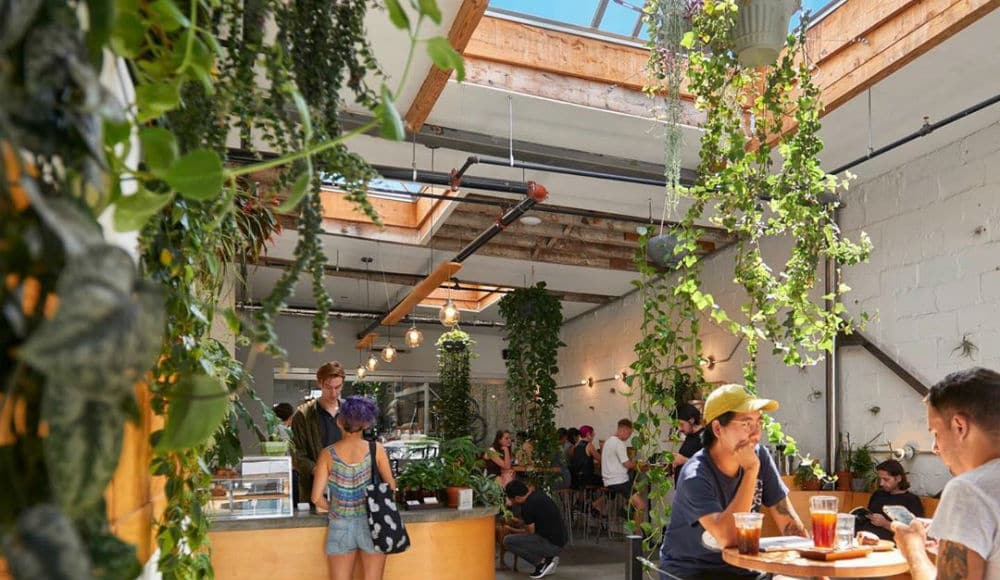 This Airy Bushwick Café Is Now The 'Best Coffee Shop In America' • Sey Coffee