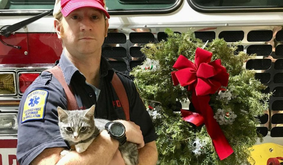 This Story Of The FDNY Saving A Little Kitten Will Warm Your Heart For The Holidays