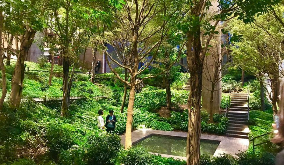 It's Always Summer At This Hidden Indoor Garden In A Midtown Office Building • Ford Foundation
