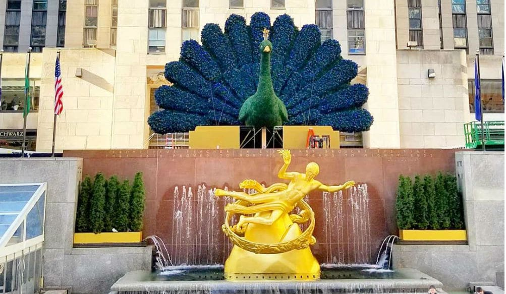 A Massive Floral Peacock Has Appeared At Rockefeller Center