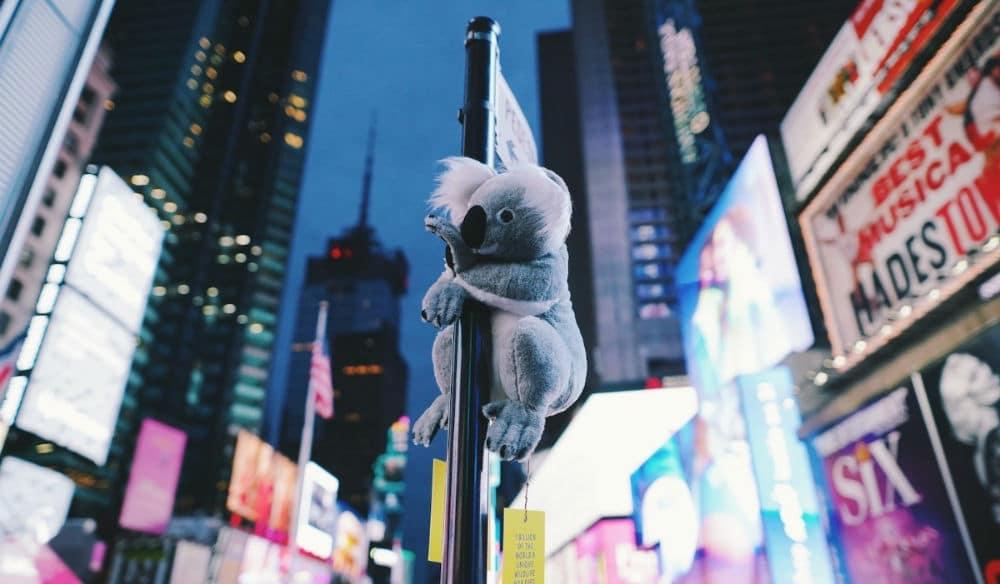 Koalas Are Hanging Out All Over NYC To Help Raise Money For Australian Bushfire Relief