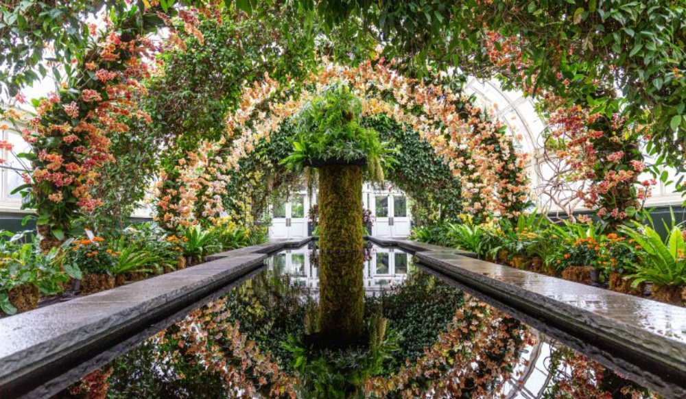 The Annual Orchid Show Returns To The New York Botanical Garden This Weekend
