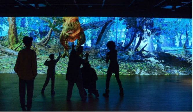 AMNH Is Hosting Video Tour Watch Parties Of Its Collections Every Tuesday & Thursday