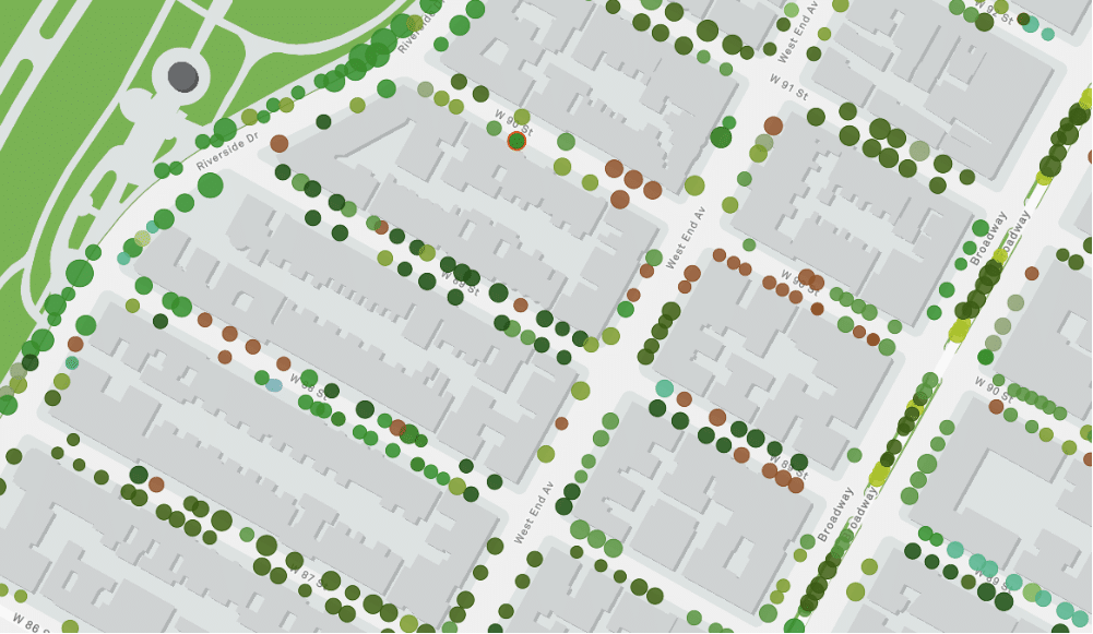 This Map Shows Exactly Where Every Single Tree On NYC Streets Is Located