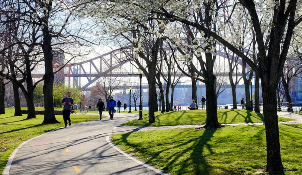 NYC Is Bringing Its Parks To Your Home With LIVE Tours, Fitness Classes & More