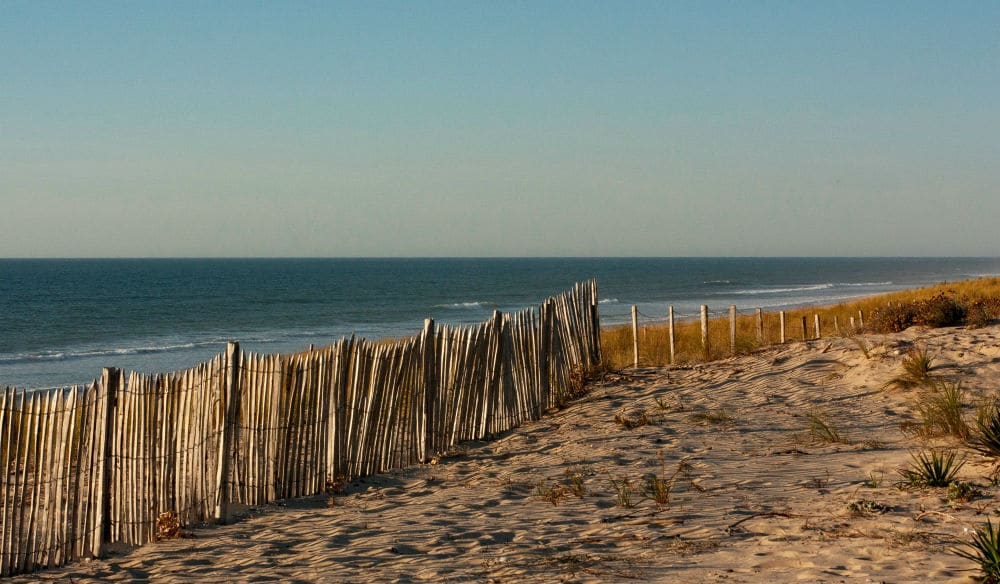 NYC Has Started Putting Fences 'In Position' To Keep New Yorkers Off Beaches