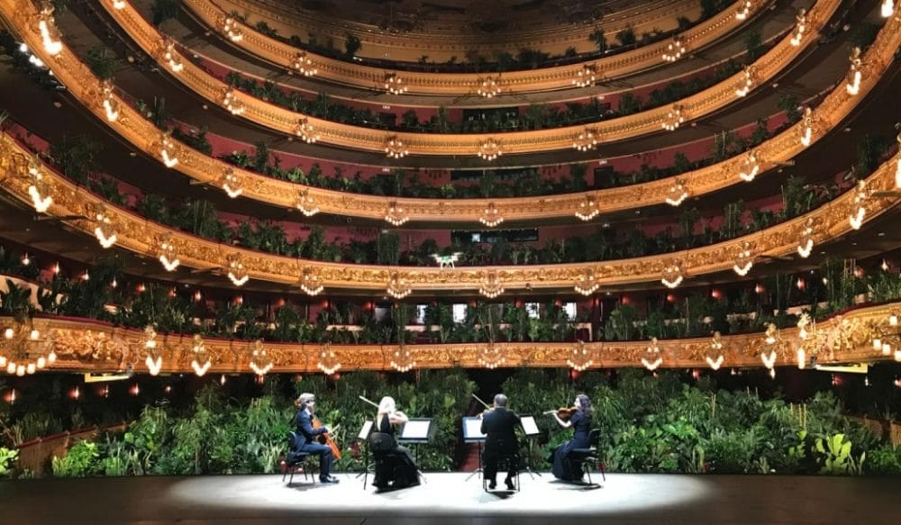 This Opera House In Barcelona Reopened With A Wild Concert For 2,300 Potted Plants