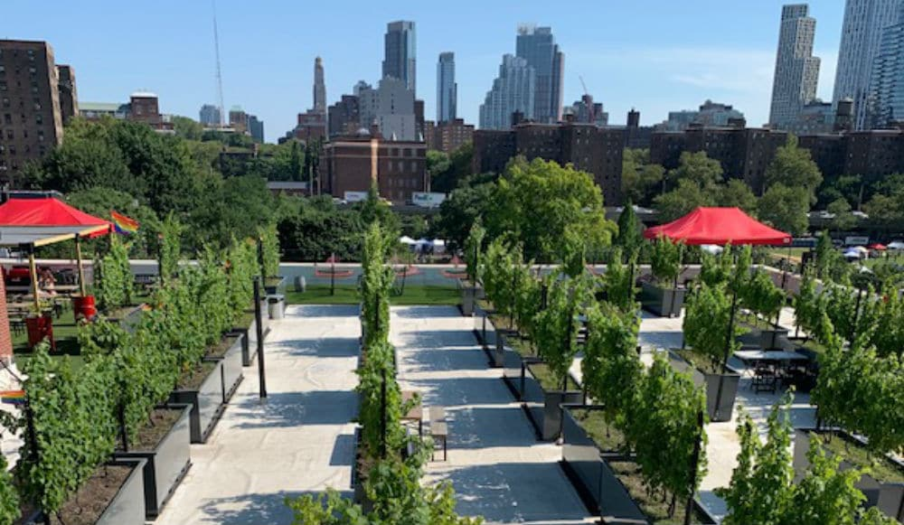 Take A Virtual Trip To A Rooftop Vineyard With This Amazing Wine Tasting & Delivery