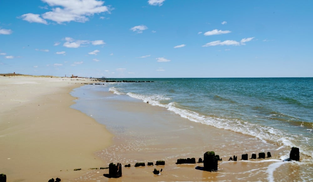 10 Best Beaches For A Sunny Day In NYC