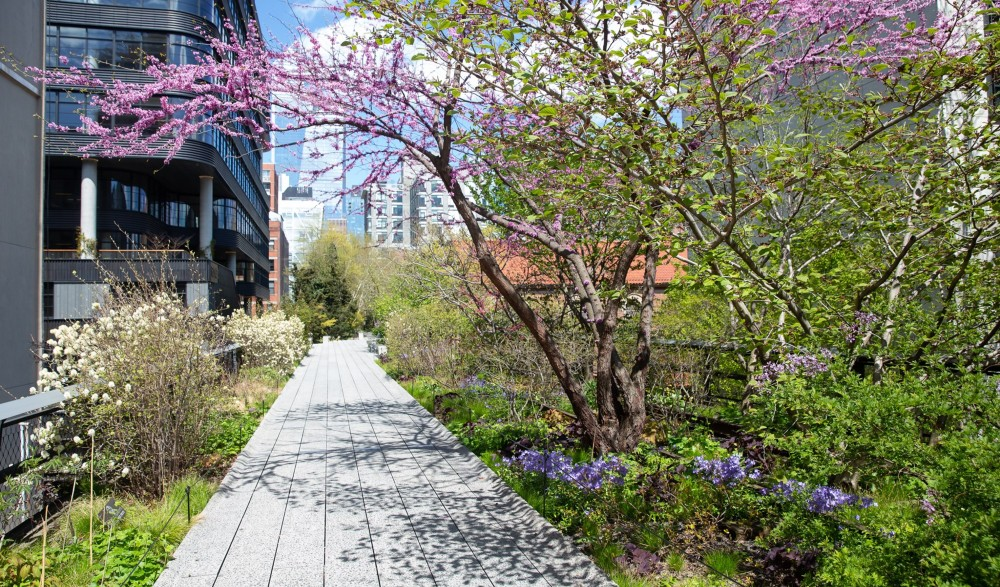 The High Line Officially Reopens Today