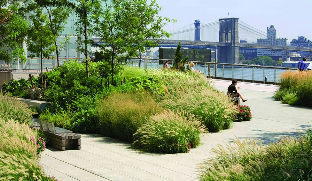This Hidden Rooftop Park With Views Of Brooklyn Bridge Is FiDi's Best Kept Secret
