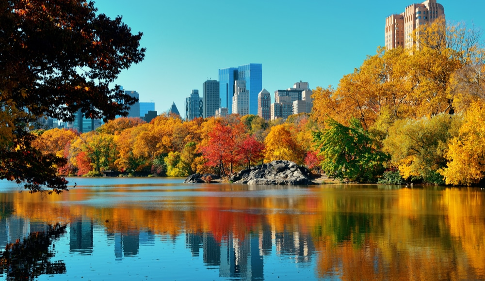 New York's Gorgeous Fall Foliage Is Expected To Peak Early This Year