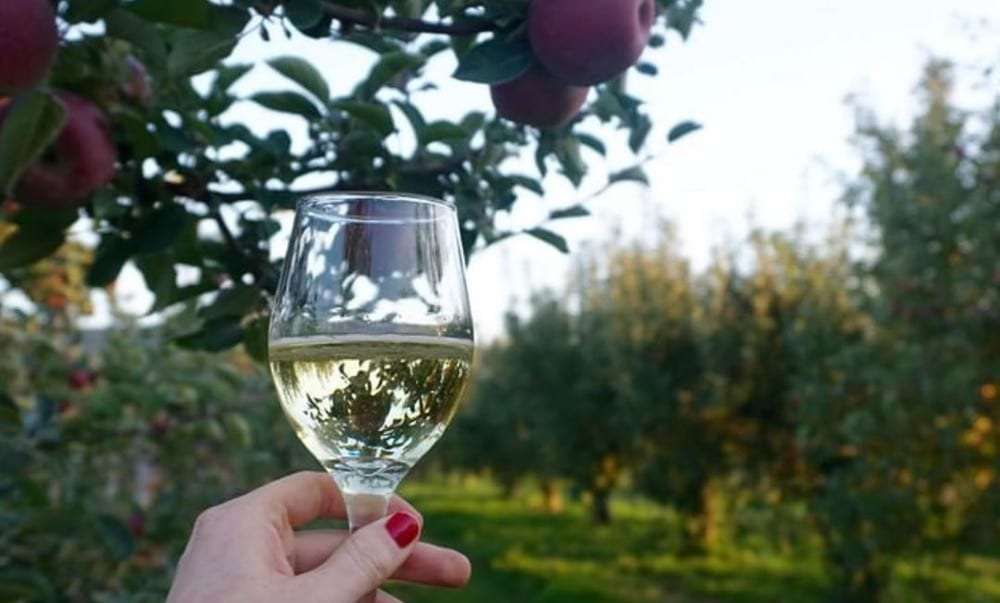 Head To This Lovely NY Farm For Apple Picking Followed By Delicious Hard Cider Flights