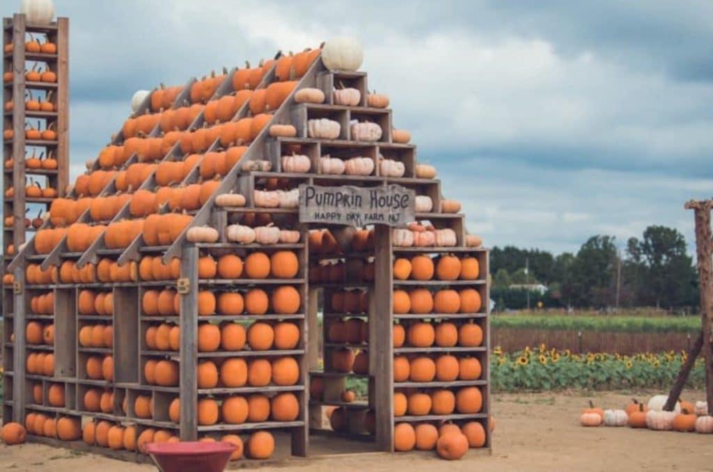 This NJ Farm Has The Most Adorable Pumpkin Village, Plus A 10-Acre Corn Maze