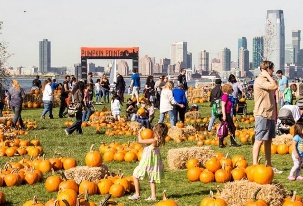Governors Island Waterfront Pumpkin Patch Is Returning For The Halloween Season