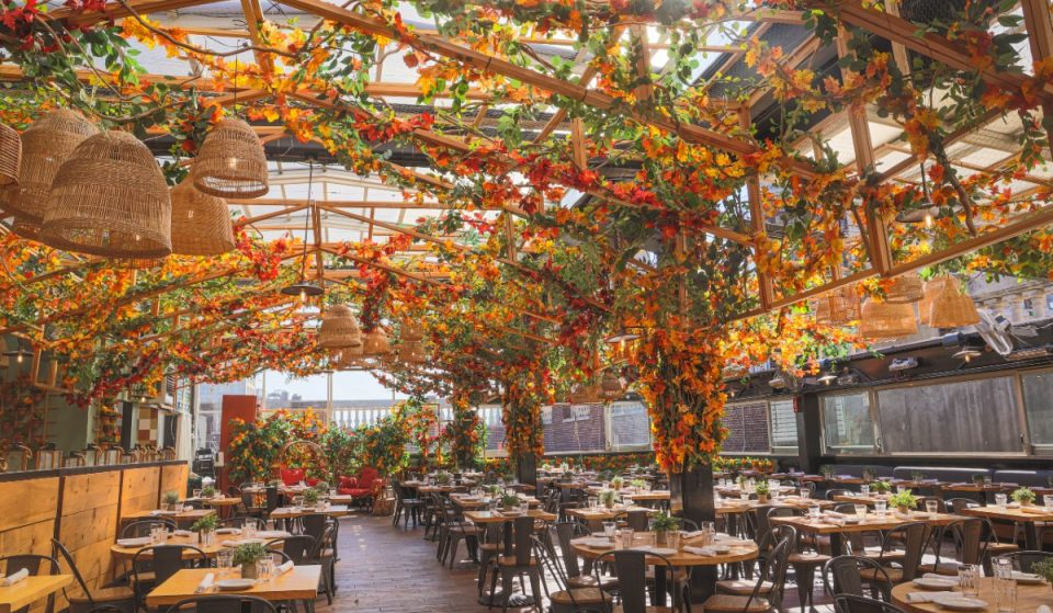 Eataly's Rooftop Has Transformed Into A Fantastical Forest Of Fall Foliage