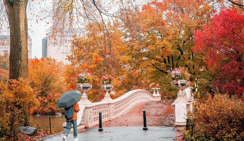 These Stunning Snapshots Perfectly Capture New York City's Changing Fall Foliage
