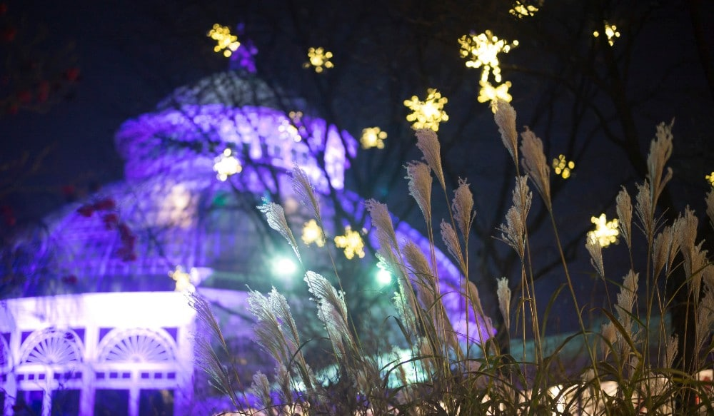 NYBG's Luminous New Color-And-Light Experience Will Enchant NYers This Holiday Season