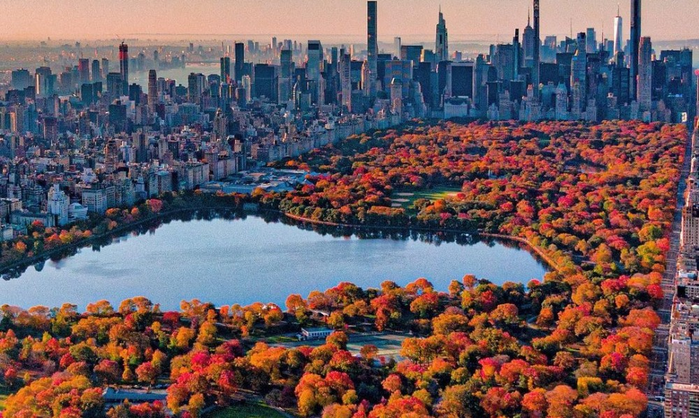 65 Things New Yorkers Say They're Most Thankful For This Year