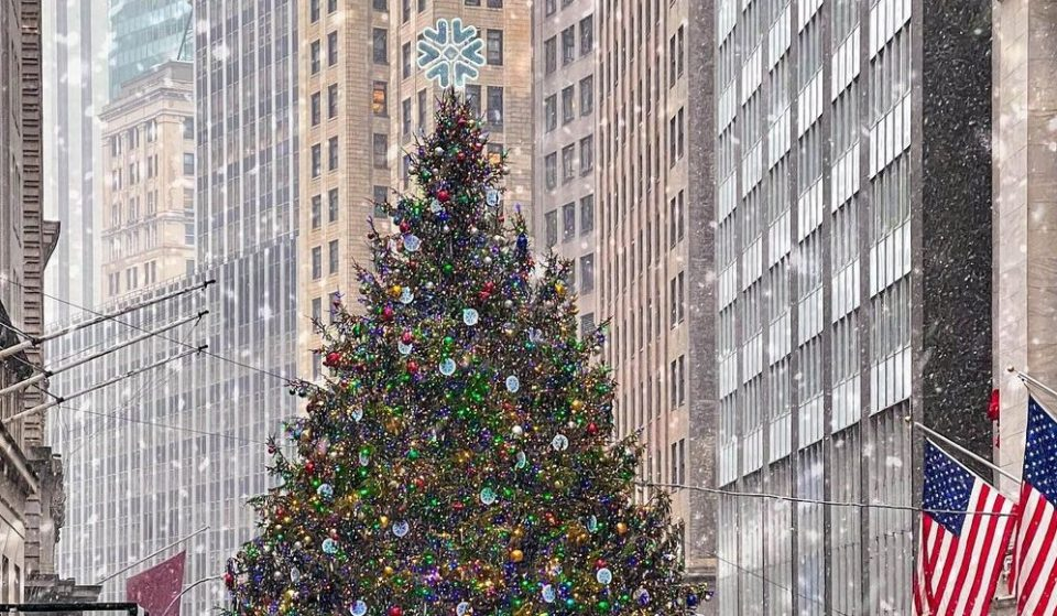 The 10 Best NYC Christmas Trees That Aren't In Rockefeller Center