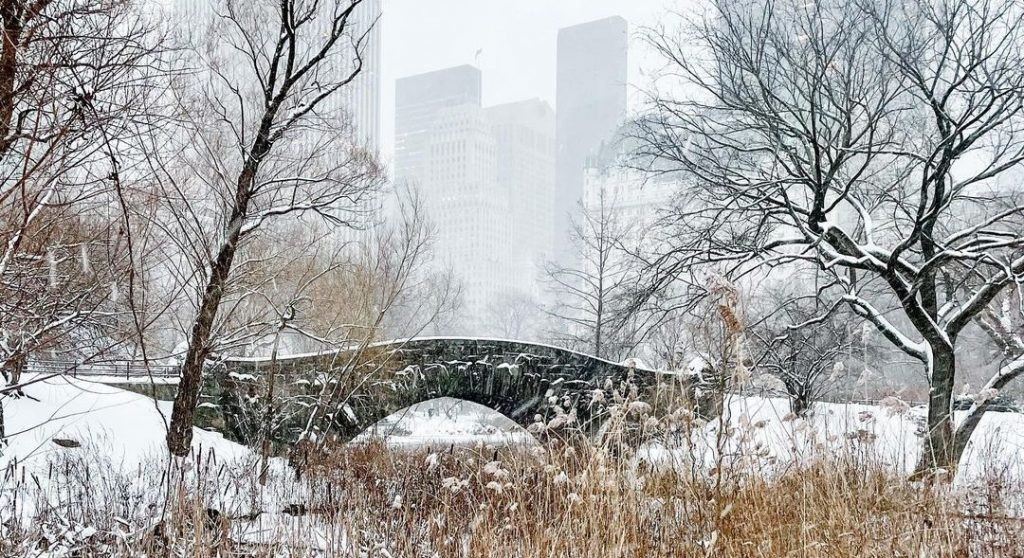 Central Park Already Has 5 Inches Of Snow…With Another Foot On The Way