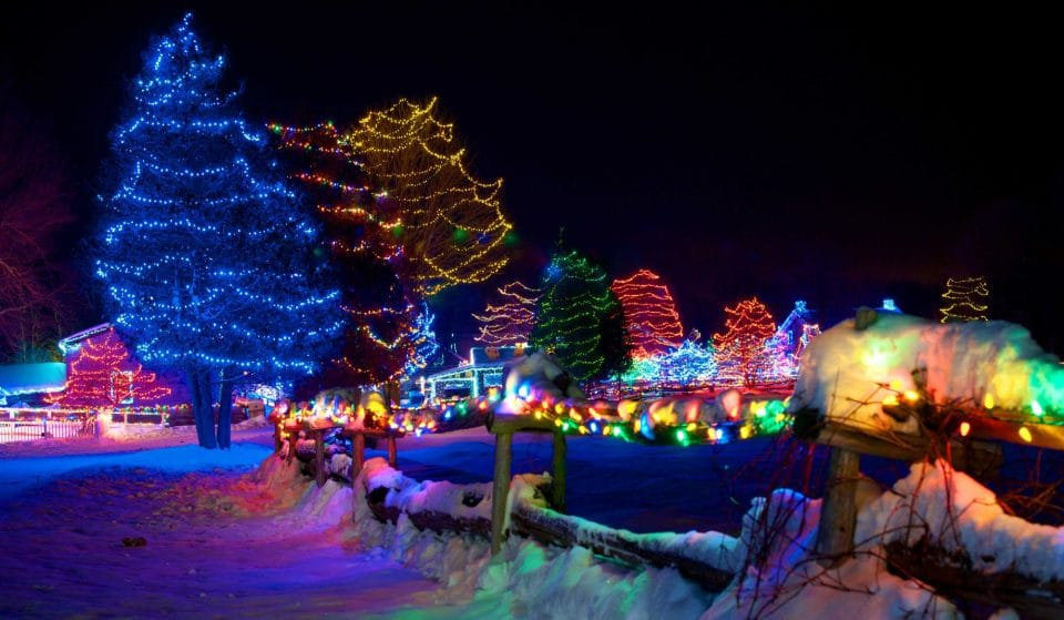 A Picturesque Light Festival Is Bringing Much-Needed Holiday Joy To Eastern Ontario • Alight at Night