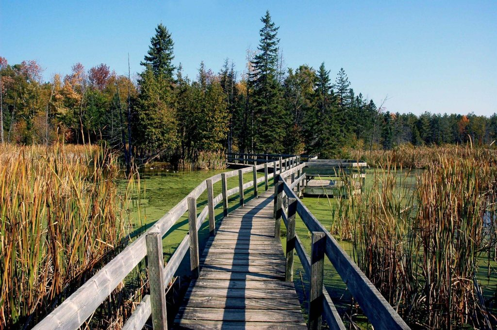 5 Of Ottawa's Greenbelt Trails To Visit This Week