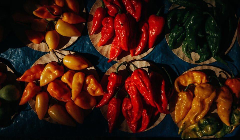 Ottawa's Insane Hot-Sauce Expo Launches This Saturday