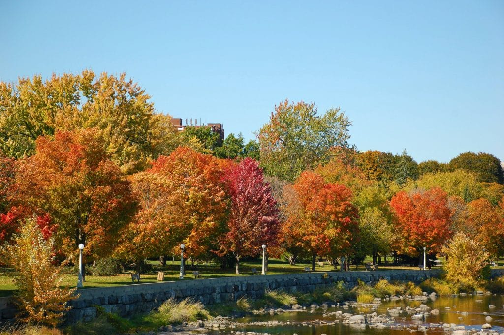 6 Beautiful Locations To Admire The Changing Fall Foliage In Ottawa