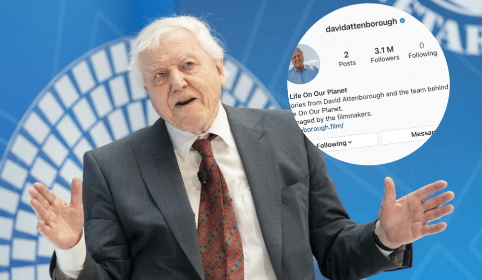 """Sir David Attenborough Joins Instagram Because """"The World Is In Trouble"""""""