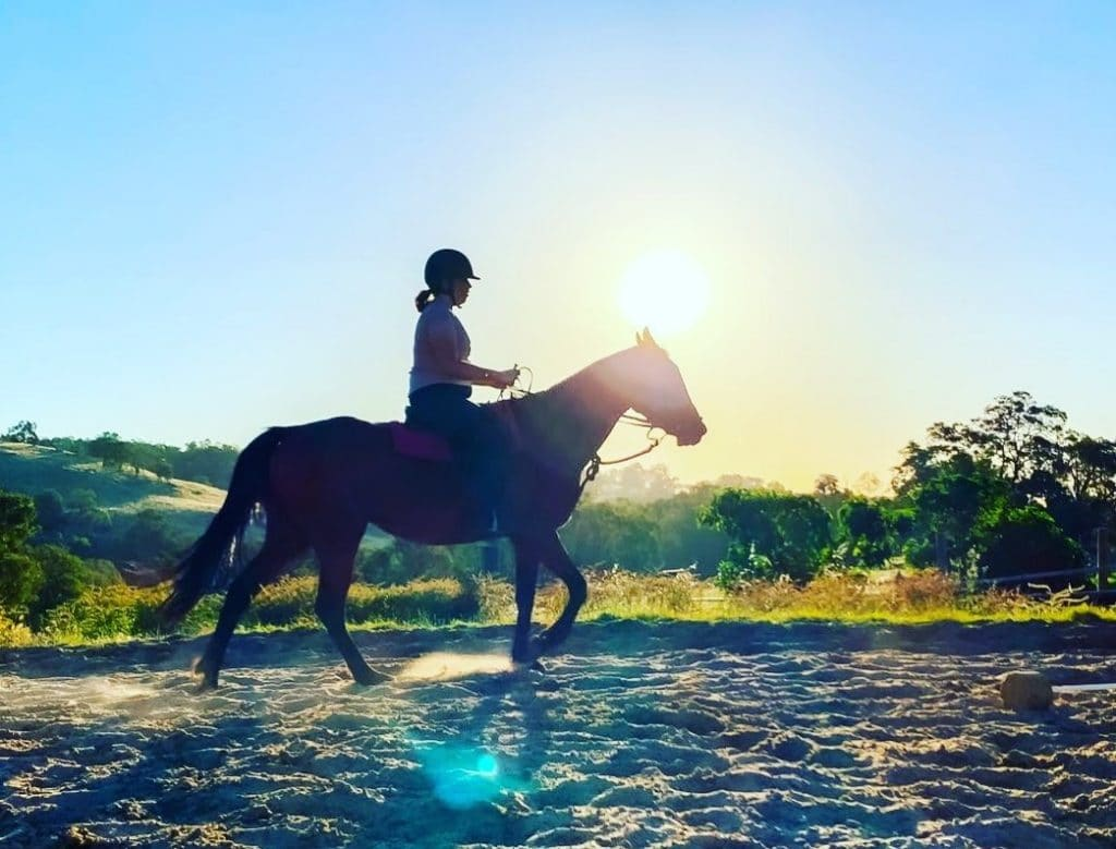 Jarrahdale Equestrian Is More Than Just A Riding School, It's An Oasis For The Soul