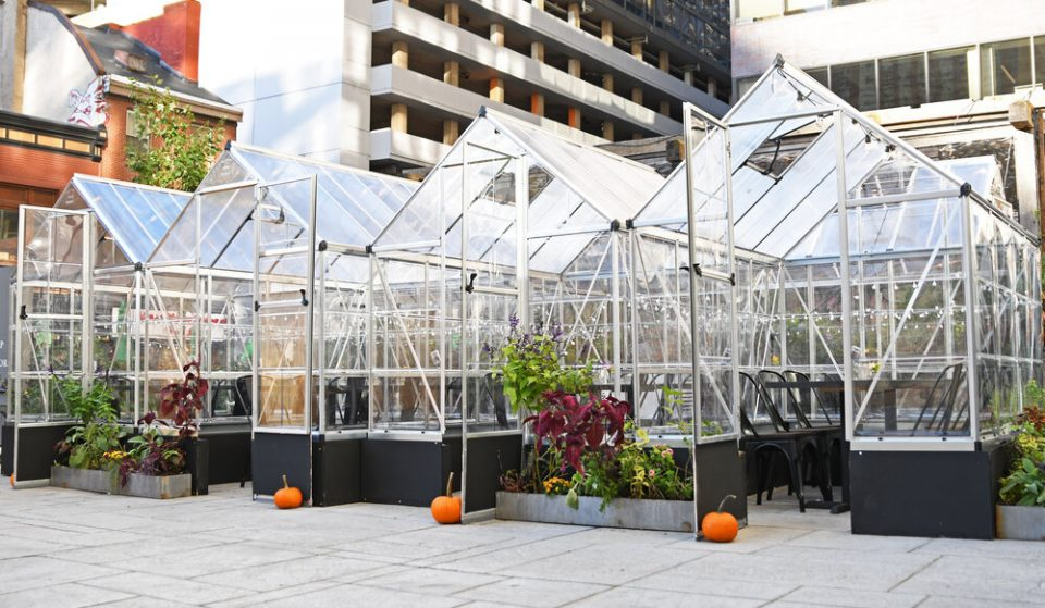 Dine In An Adorable Little Greenhouse At This Center City Restaurant • Harper's Garden
