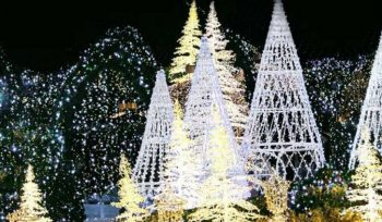 Immerse Yourself In This Twinkling Winter Wonderland Of Lights Opening Soon At Wells Fargo Center