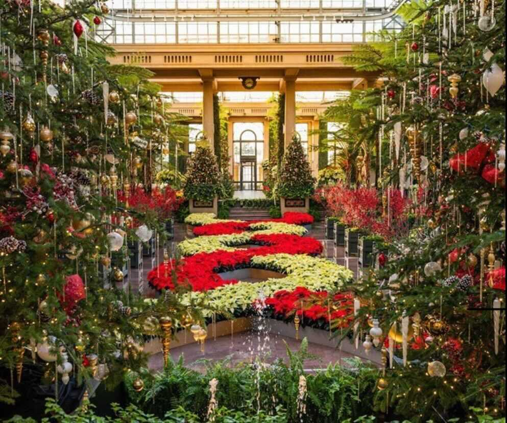 Bask In The Beauty Of Longwood Garden's Brilliant Holiday Display
