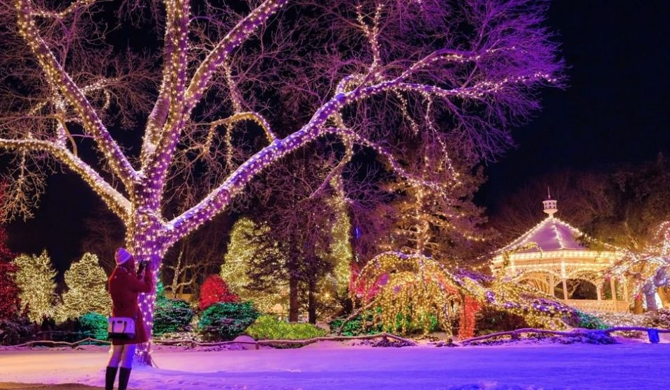 10 Philly Spots In Which To See This Year's Dazzling Holiday Lights