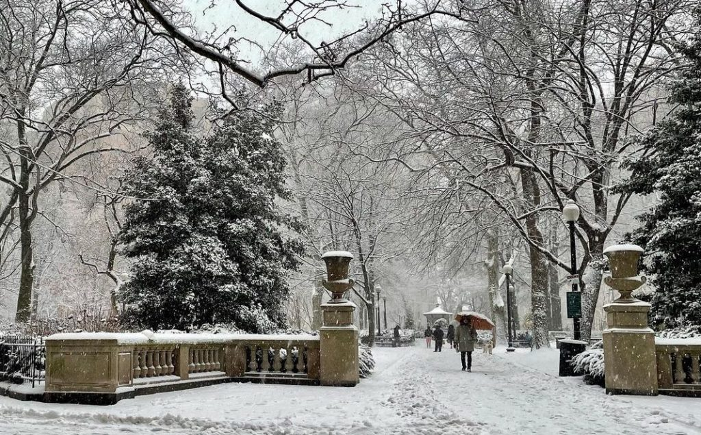 19 Photos Of Philly Looking Like An Absolute Winter Wonderland