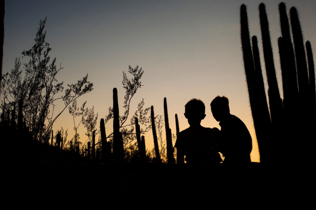 5 Things To Do This August In Phoenix