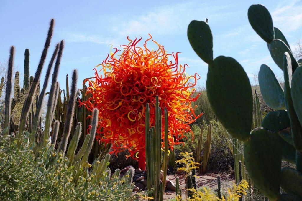 chihuly art desert botanical garden