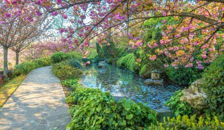Il meraviglioso Orto Botanico nella capitale