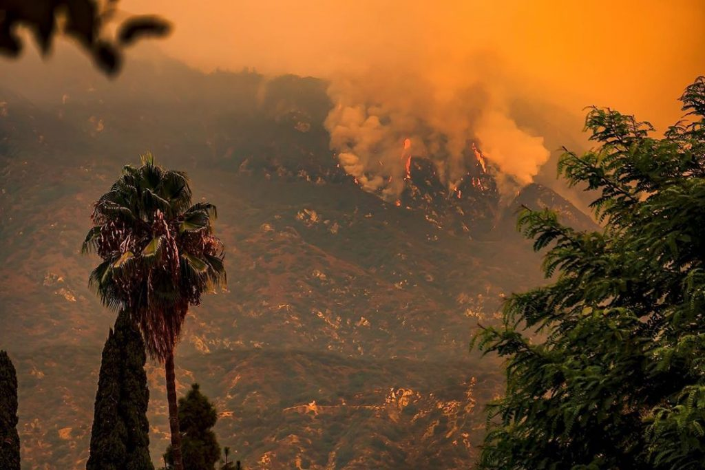 Help victims of wildfires 2020