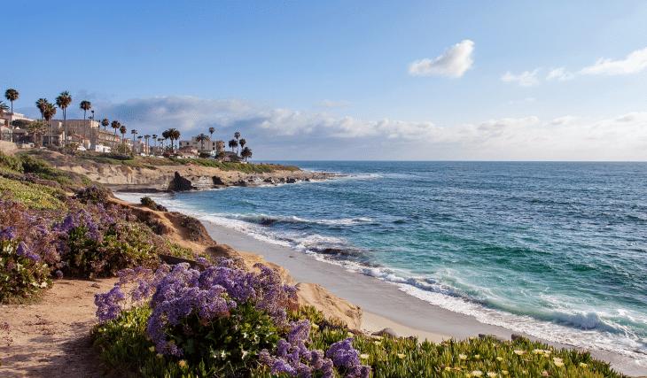 8 Spots For An Adventurous Day In La Jolla