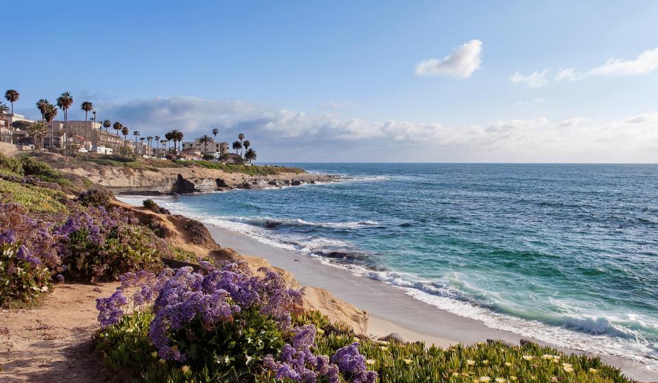 5 Spots For An Adventurous Day In La Jolla