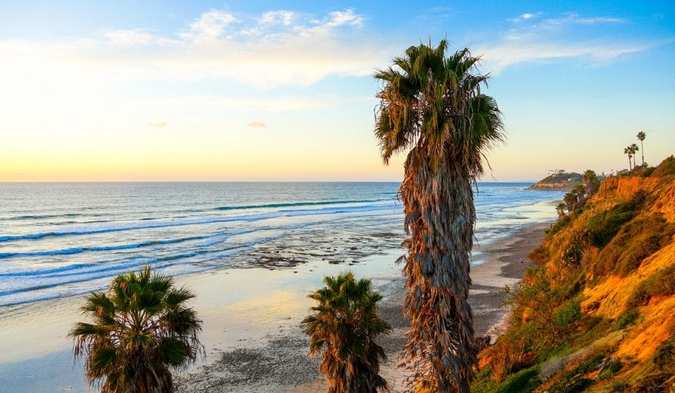 8 Amazing Things To Do In San Diego This July