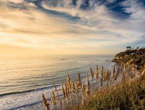 11 Wonderful Spots To Visit In Dreamy Encinitas