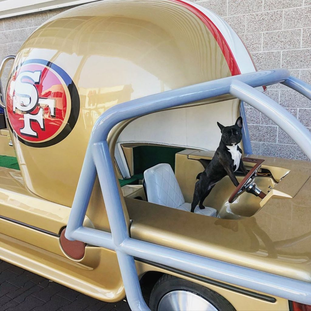 The 49ers therapy pets